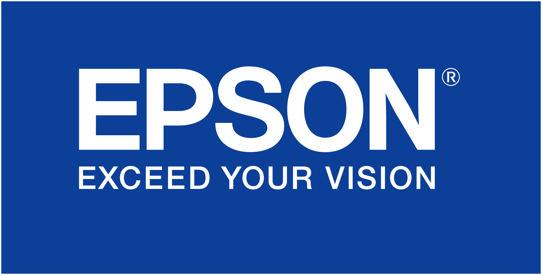 EPSON Chips